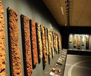 World Soil Museum 1